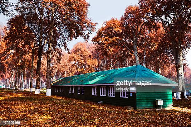 Trees and cottage in a garden, Naseem Bagh, Srinagar, Jammu And Kashmir, India