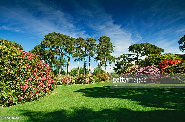 Trees and formal garden