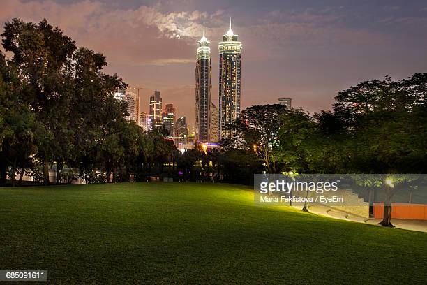 trees and grass in park against modern buildings at night - gras stock pictures, royalty-free photos & images