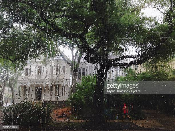 Trees And House Seen From Wet Window During Rainy Season