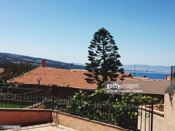 trees and houses against clear blue sky - amanda and amanda stock pictures, royalty-free photos & images