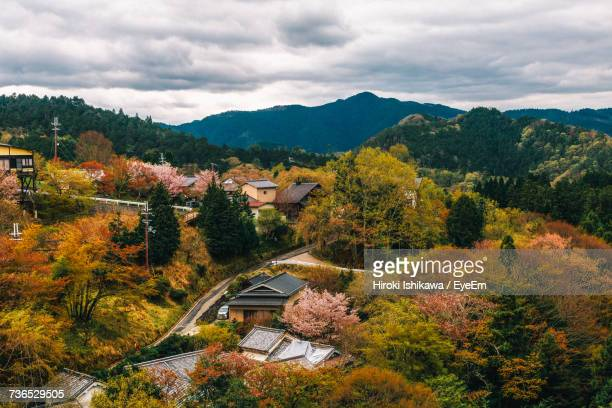trees and houses against sky during autumn - 奈良市 ストックフォトと画像