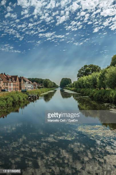 trees and houses along canal with sky reflected on water in damme. a country village in belgium. - flandes occidental fotografías e imágenes de stock