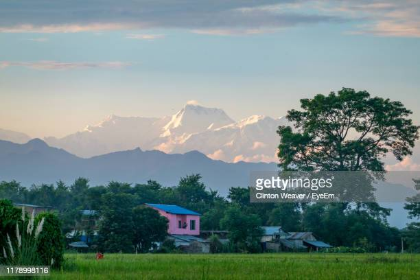 trees and houses on field against sky - chitwan stock pictures, royalty-free photos & images