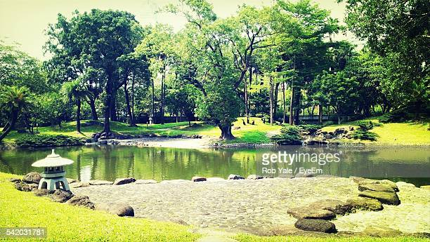 Trees And Lake In Japanese Garden