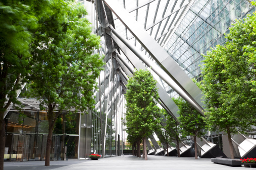 Trees and Office Buildings 166006404