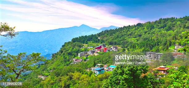 trees and plants growing on mountain against sky - sikkim stock pictures, royalty-free photos & images