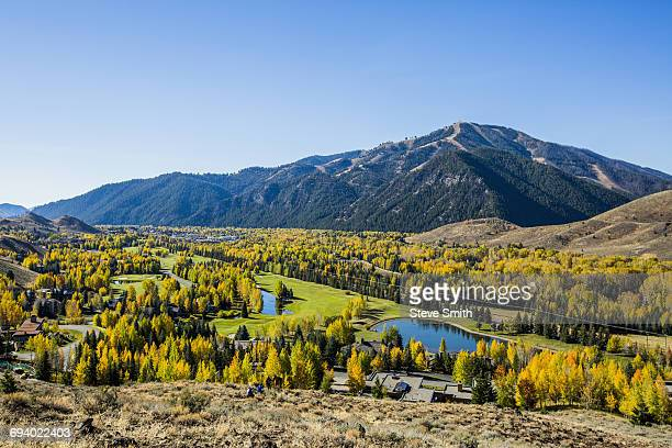 trees and ponds in mountain landscape - idaho stock pictures, royalty-free photos & images