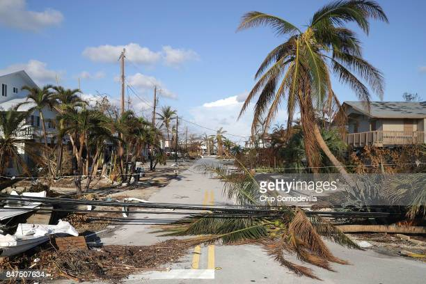 Trees and powerlines blown down by Hurricane Irma continue to block streets September 15 2017 in Marathon Florida Many places in the Keys still lack...