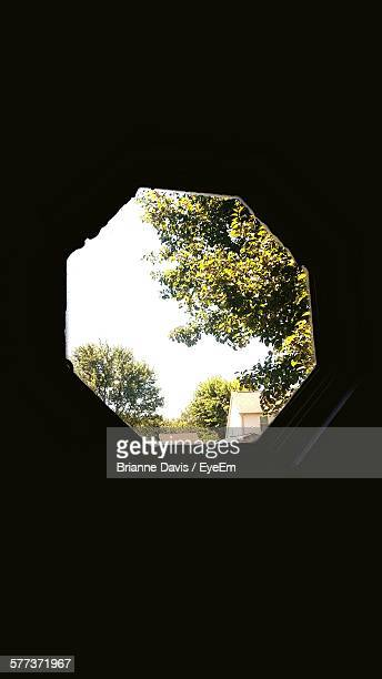 trees and sky seen through hexagon window - brianne stock pictures, royalty-free photos & images