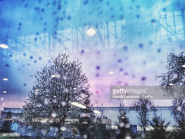 trees and sky seen through wet glass during sunset - taken on mobile device stock photos and pictures