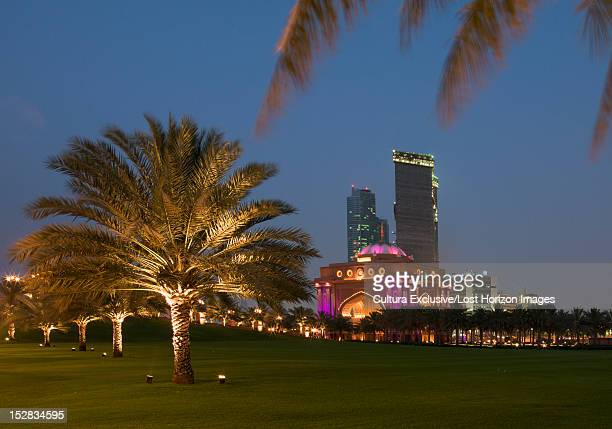 Trees and skyscrapers lit up at night
