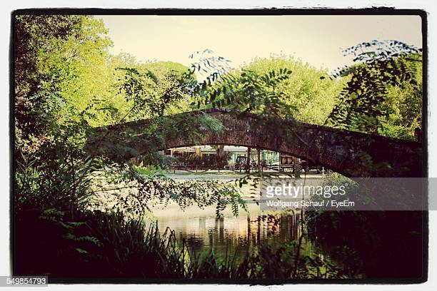 trees and stone bridge over river - massa stock pictures, royalty-free photos & images