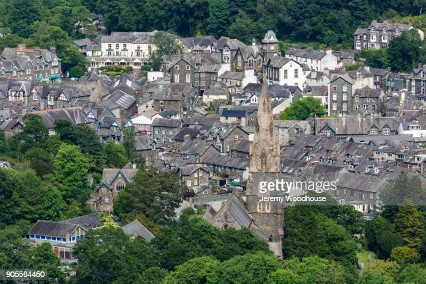 trees and tower in cityscape - cumbria stock pictures, royalty-free photos & images