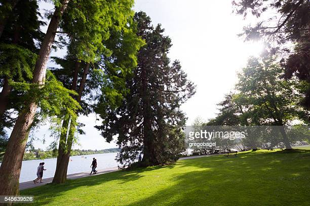 Trees and walkers at Green Lake in Seattle, WA