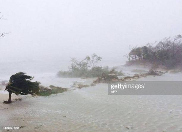 Trees are blowen sideways as hurricane Matthew makes landfall in Adelaide New Providence island in the Bahamas on October 6 2016 Shelters along the...