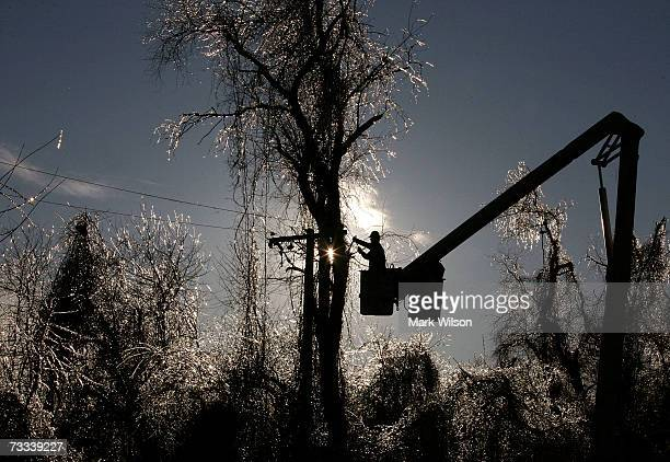 Trees are covered with ice as linemen working for the Southern Maryland Electric Company repair damaged power lines February 15 2007 in Dunkirk...