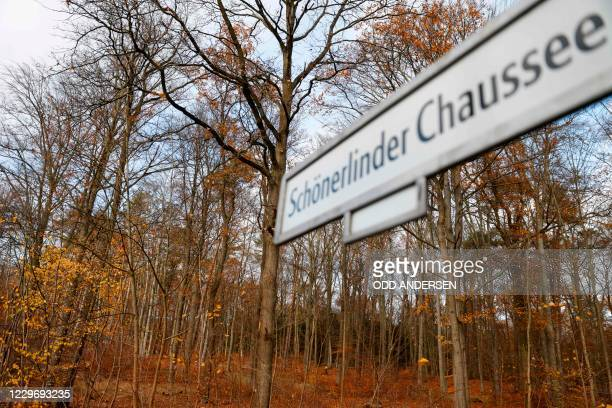Trees are pictured on November 20 2020 in an area where walkers found on November 8 parts of bones that were identified as human bones German police...