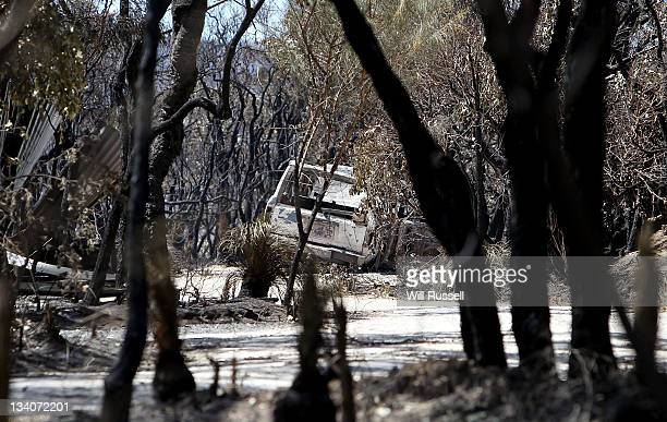 Trees are scorched on Orchard Ramble following a bush fire on November 25 2011 in Margaret River Australia 4000 hectares of forest and over 30...