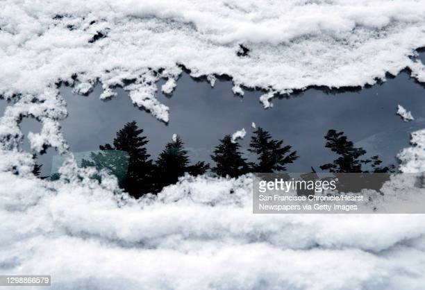 Trees are seen reflected in a snow-covered car window in the Cascade-Siskiyou National Monument outside of Ashland, Ore., on Tuesday, February 20,...