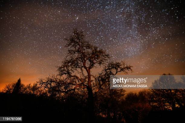 Trees are seen under a starry sky in Chateauroux, central France, on January 18, 2020.