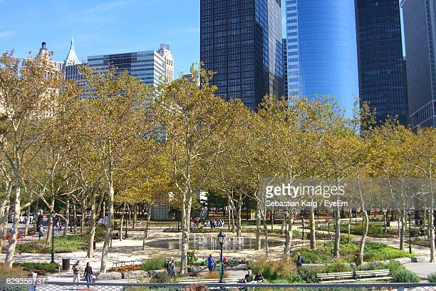 Trees At Battery Park In City