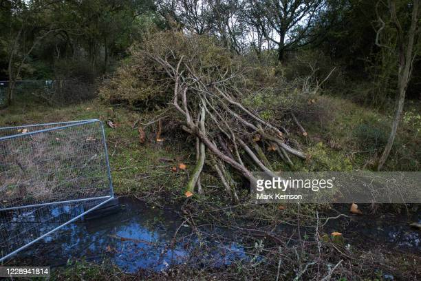 Trees at Calvert Jubilee nature reserve cleared by contractors working on behalf of HS2 Ltd are pictured on 6 October 2020 in Calvert, United...