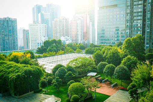 Trees between Office Buildings 1062930150