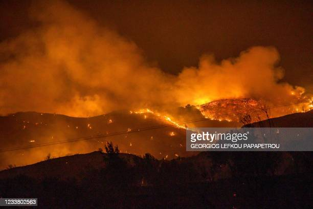 Trees burn in a forest on the slopes of the Troodos mountain chain, as a giant fire rages on the Mediterranean island of Cyprus, during the night of...