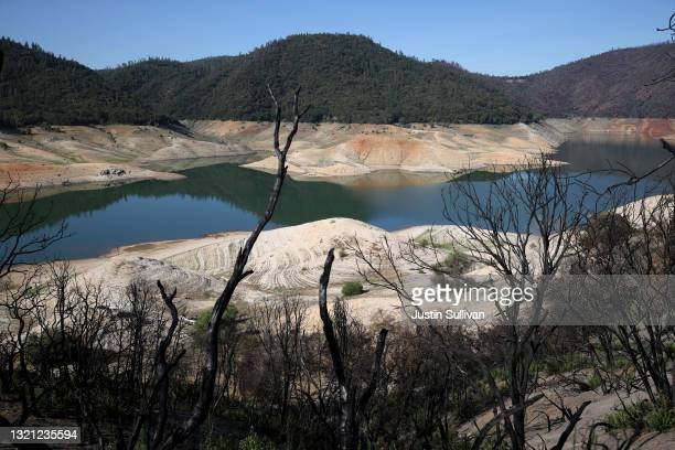 Trees burned by a recent wildfire line the steep banks of Lake Oroville on June 01, 2021 in Oroville, California. As severe drought takes hold in...