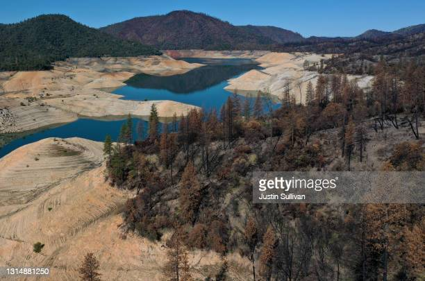 Trees burned by the recent Bear Fire line the steep banks of Lake Oroville where water levels are low on April 27, 2021 in Oroville, California. Four...