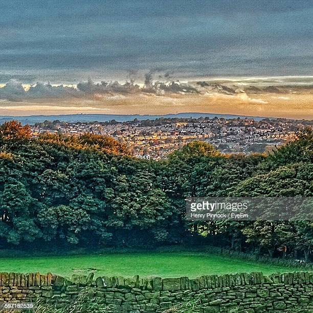 trees by city against cloudy sky - sheffield - fotografias e filmes do acervo