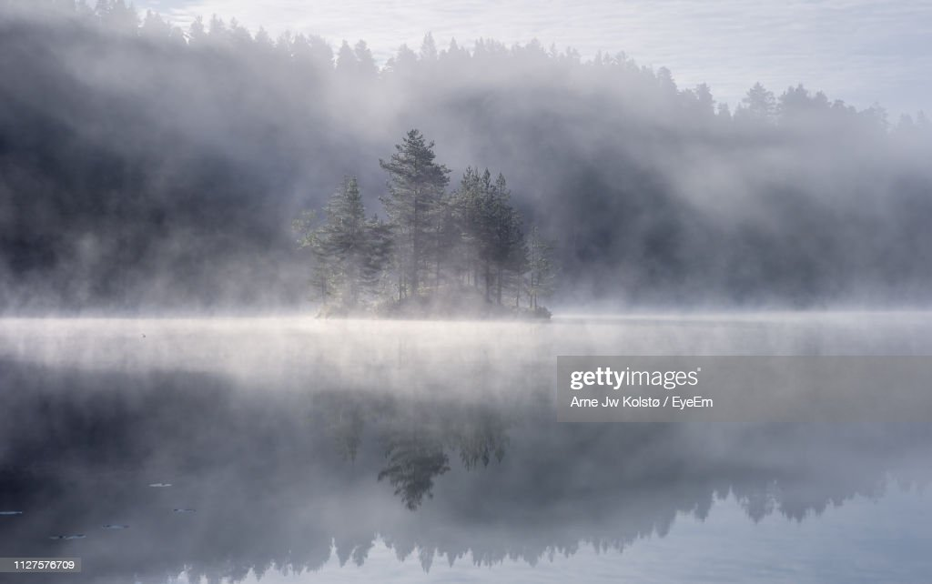 Trees By Lake Against Sky During Foggy Weather : Stock Photo