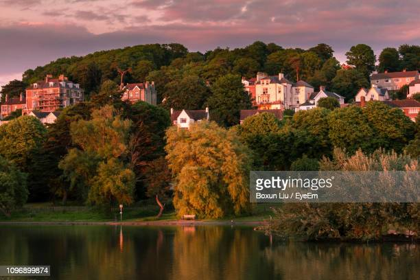 trees by lake and buildings against sky during autumn - liu he stock pictures, royalty-free photos & images