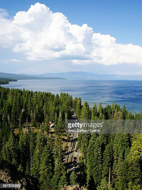 Trees By Lake Tahoe Against Cloudy Sky