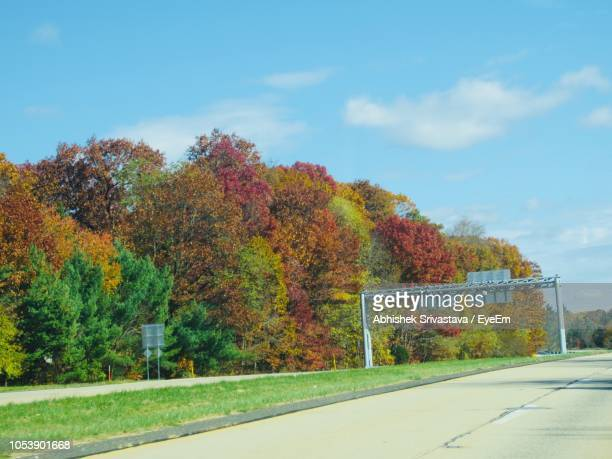 Trees By Road Against Sky During Autumn