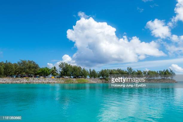 trees by sea against blue sky - saipan stock pictures, royalty-free photos & images