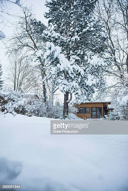Trees covered by snow at rural house, Bavaria, Germany