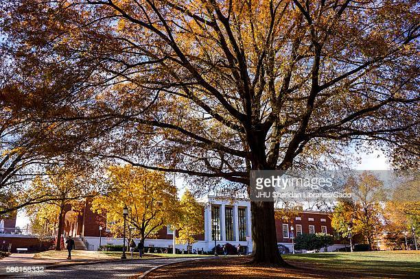 Trees covered in orange and yellow autumnal leaves frame the Milton S Eisenhower Library on the Homewood campus of the Johns Hopkins University in...
