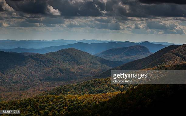Trees displaying fall colors of red and gold are at peak season along the Blue Ridge Parkway on October 20 2016 near Asheville North Carolina Named...