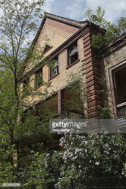 Trees grow around the ruins of the Beelitzer Heilstaetten sanatorium on May 16 2016 in Beelitz Germany The 'Baum und Zeit' elevated platform runs for...