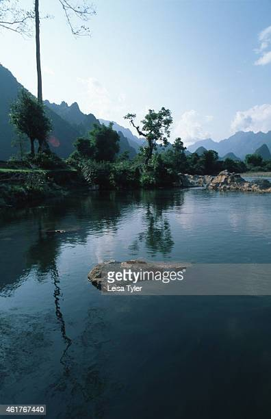 Trees growing alongside a river in Vang Vieng. A spectacular environment with stunning scenery, Vang Vieng is home to a series of limestone outcrops...