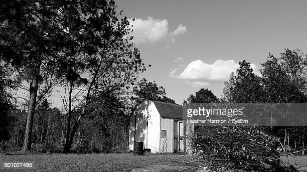 trees growing by barn on field against sky - heather harmon stock pictures, royalty-free photos & images