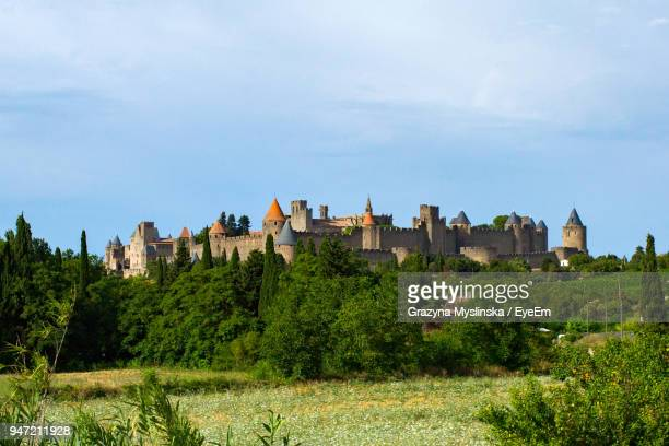 trees growing by castle against sky - carcassonne stock pictures, royalty-free photos & images