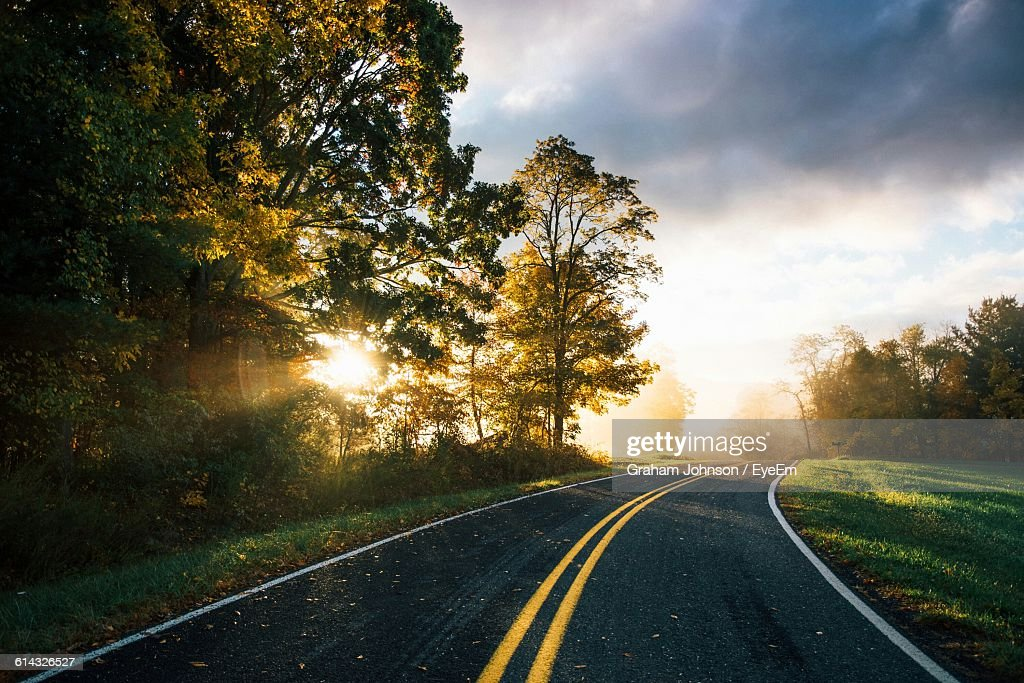 Trees Growing By Empty Road Against Sky During Sunrise : Stock Photo