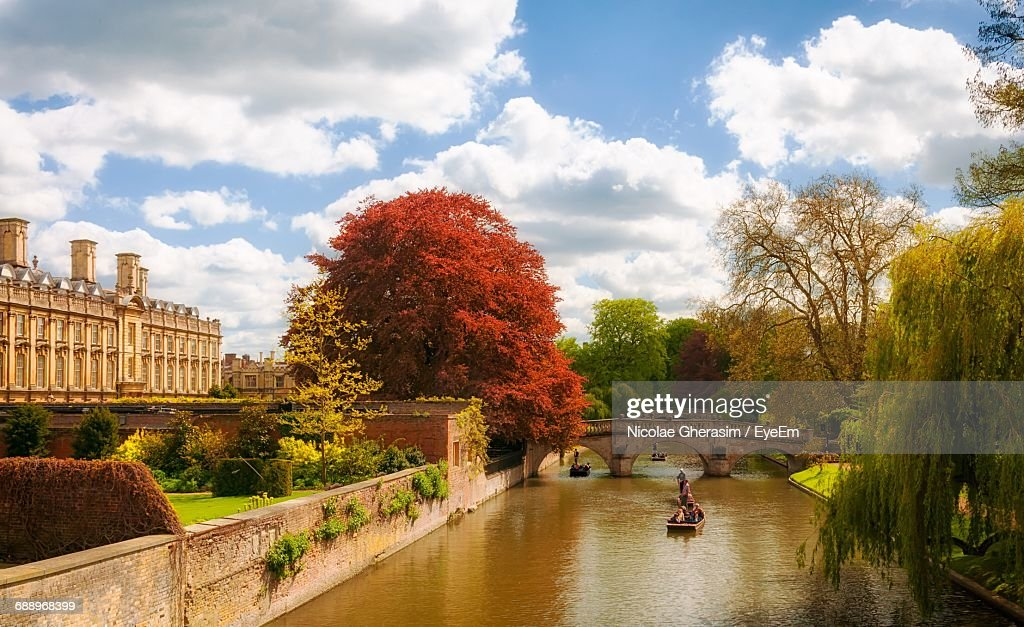 Trees Growing By River Against Sky During Autumn In City : Stock-Foto