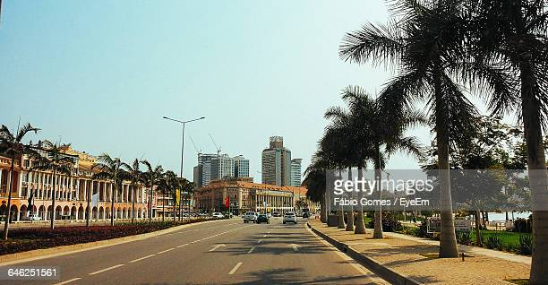 trees growing by road against clear sky in city - angola stock pictures, royalty-free photos & images