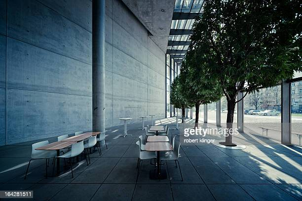 CONTENT] Trees growing in the very sparse concrete environment of the Pinakothek der Moderne Museum in Munich