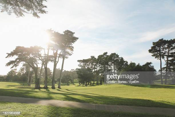 trees growing on golf course against sky - bortes stock pictures, royalty-free photos & images