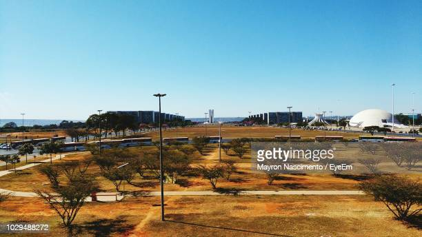 trees growing on landscape against clear blue sky - distrito federal brasilia stock pictures, royalty-free photos & images